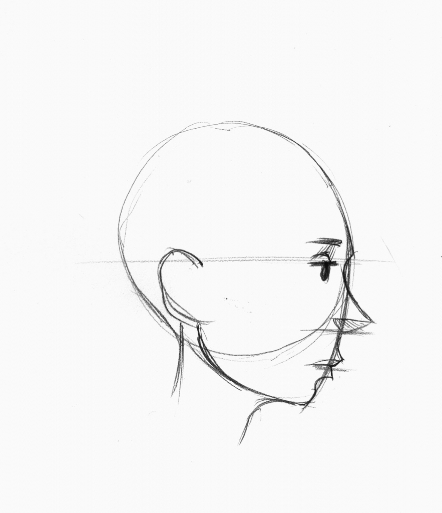 883x1024 Drawing Face Profile