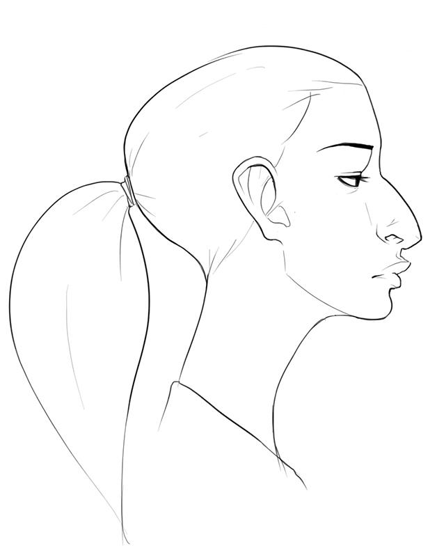 628x800 Ian Sketchblog Ponytail Head Profile