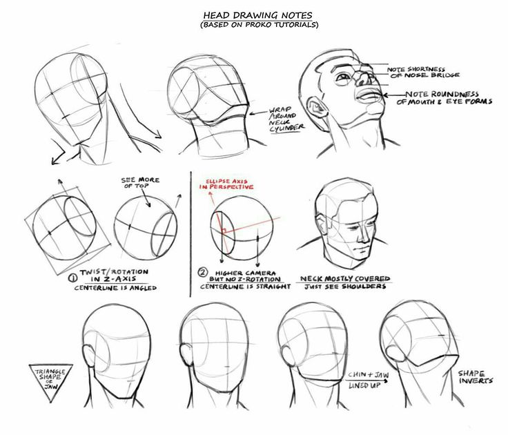 736x630 84 Best Face Shapes Images On Drawing Faces, Drawing