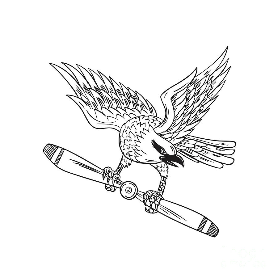 900x900 Shrike Clutching Propeller Blade Black And White Drawing Digital