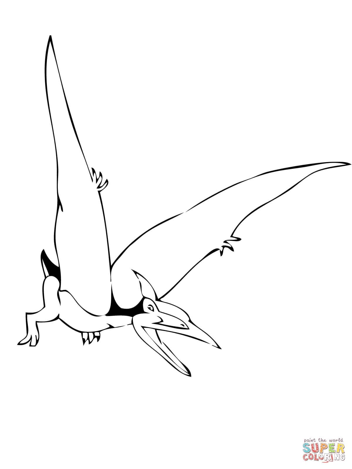 pteranodon drawing at getdrawings  free download