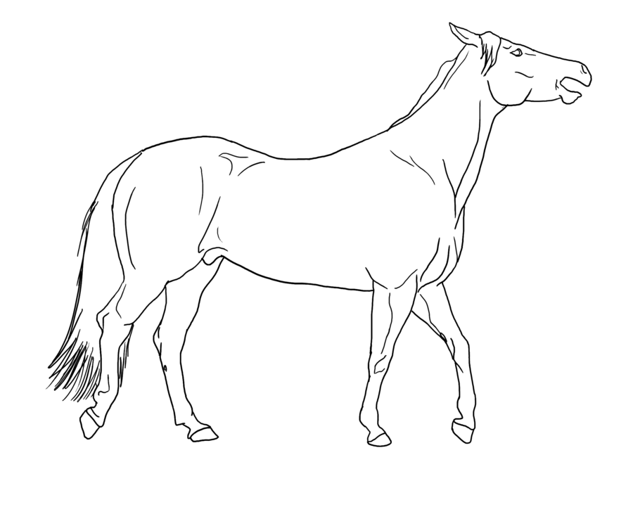 900x721 Horse Walking Mouth Open Lines Public Domain By Allicorn