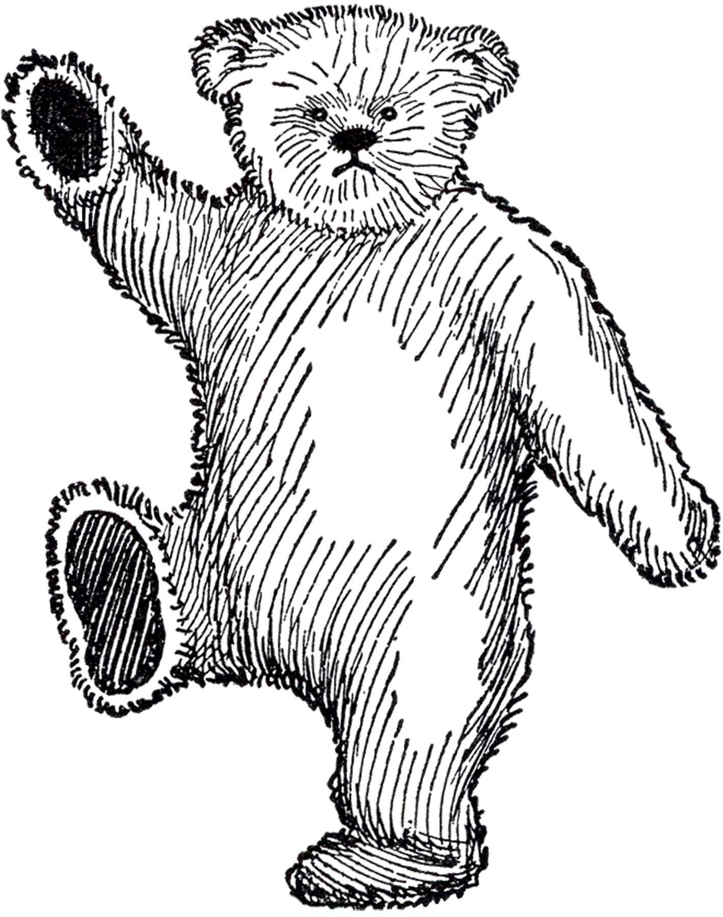 1419x1800 Public Domain Teddy Bear Image