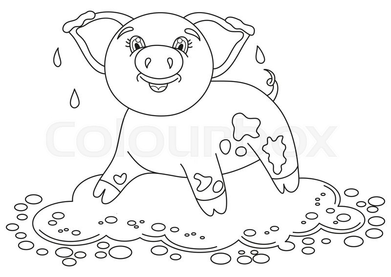 800x567 Vector Illustration Of Cute Pig In A Puddle, Funny Piggy Standing