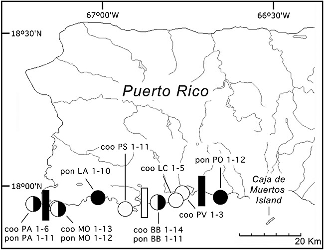 650x501 Map Of Western Puerto Rico. Circles Indicate The Approximate