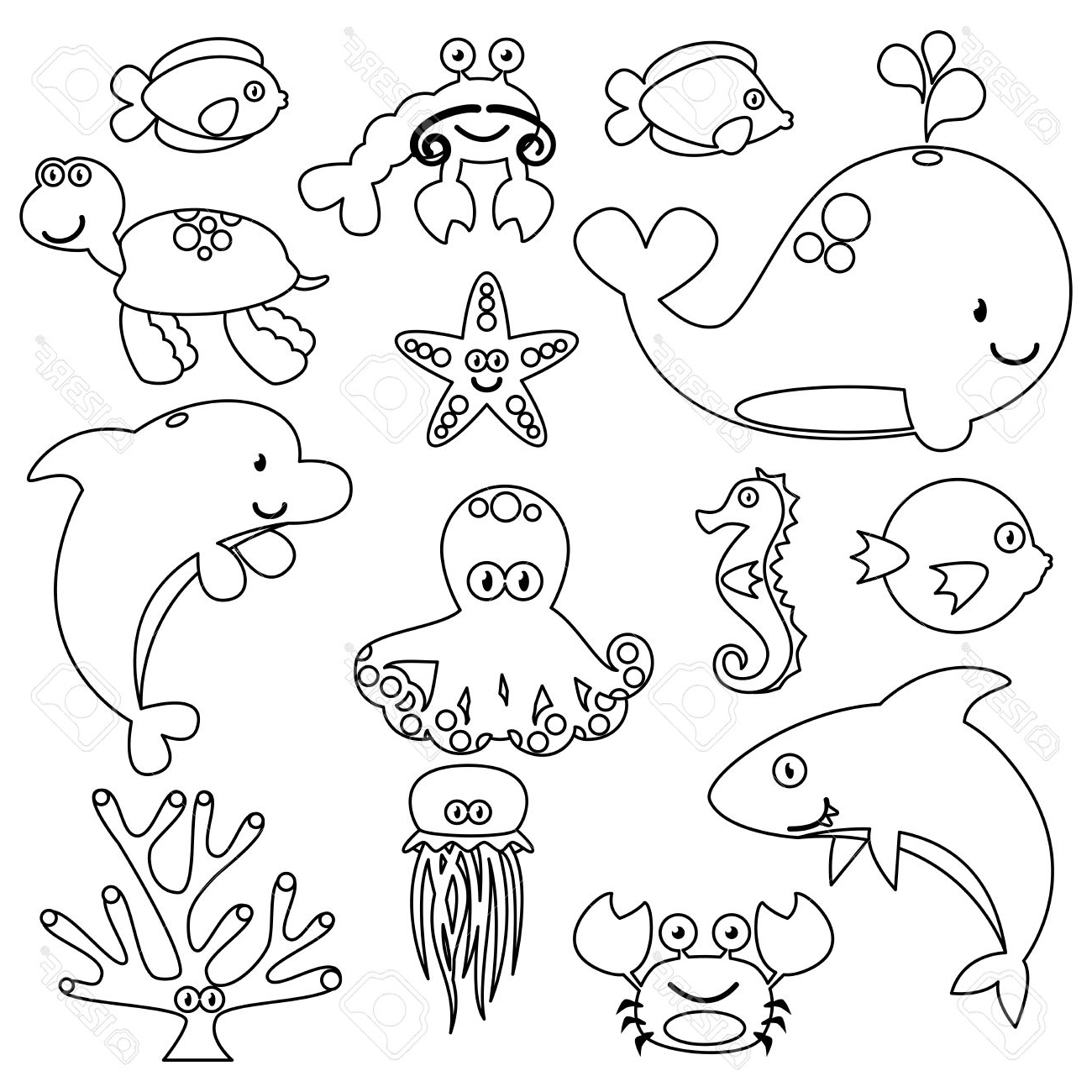 1300x1300 Ocean Animals Drawings Pictures Puffer Fish Stock Photos