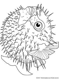 236x314 Blowfish Clipart Black And White