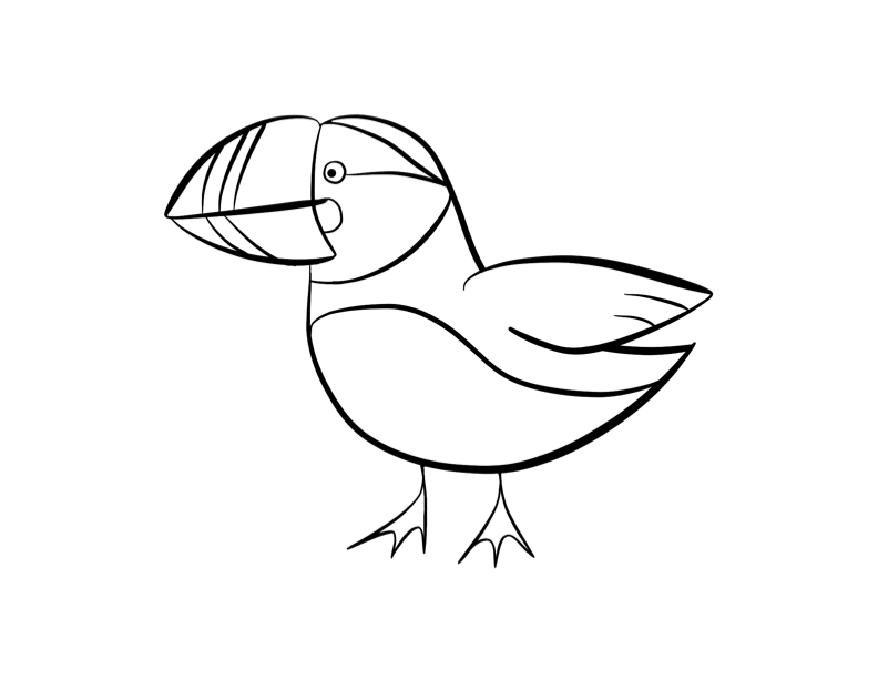 718x957 puffin coloring page 792x612 puffin images