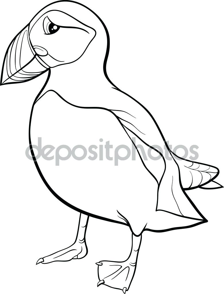 Puffin Drawing at GetDrawings.com | Free for personal use Puffin ...