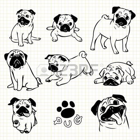 450x450 Line Drawing Of Pug Dog Set On Grid Paper Use For Elements