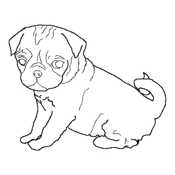 600x600 Pug Coloring Pages Pug Coloring Pages Pug Dog Coloring Page Pug