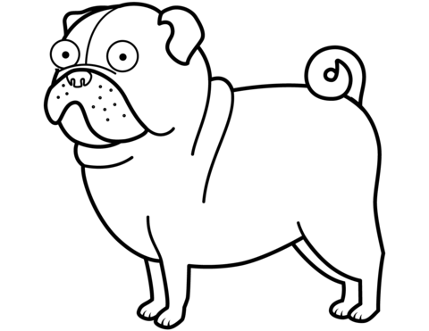 480x371 Pug Dog Coloring Page Free Printable Coloring Pages