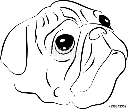 500x427 Vector Sketch Of Pug Dog Stock Image And Royalty Free Vector