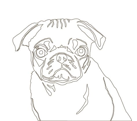 474x419 Easy To Draw Pug That