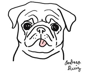 284x241 Image Result For Pug Line Drawing Simple Crafts