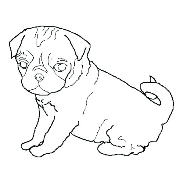 600x600 Poptropica Coloring Pages Top Rated Pug Coloring Page Pictures