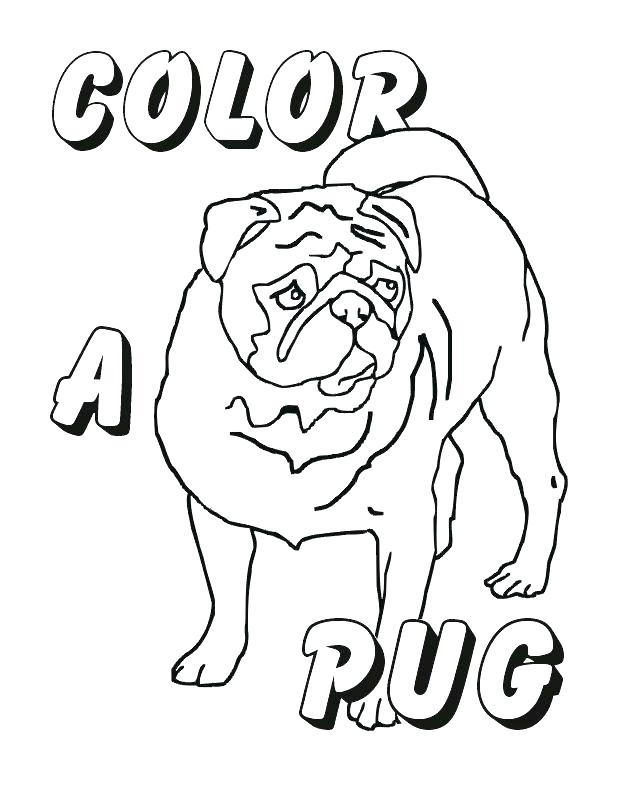 618x789 Pug Coloring Pages Pug Coloring Pages Pug Dog Coloring Page Pug