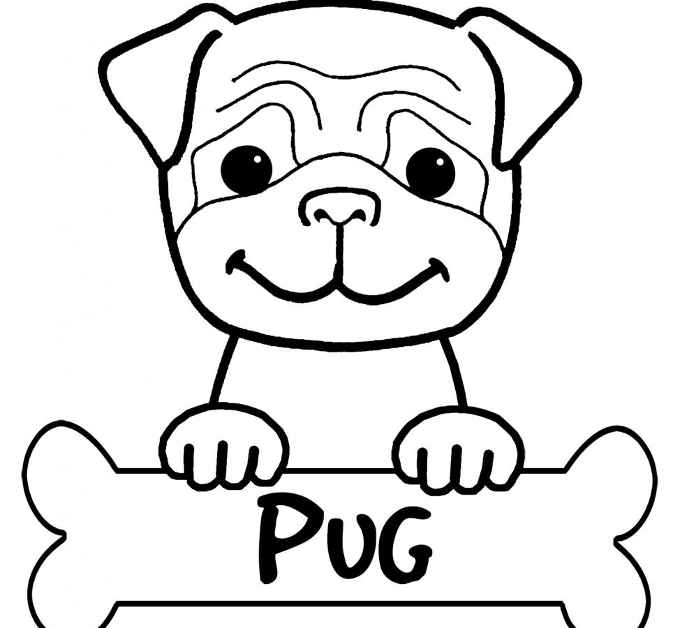 974x900 Pug Puppy Coloring Page To Print Free Printable Pages Animals Baby