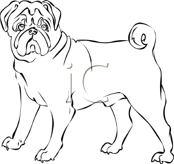 350x331 Pug Clipart Line Drawing