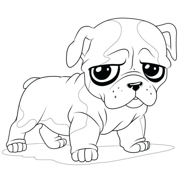 618x652 Hand Drawing Dog For Coloring Pages Post C Pug Adults Online Free