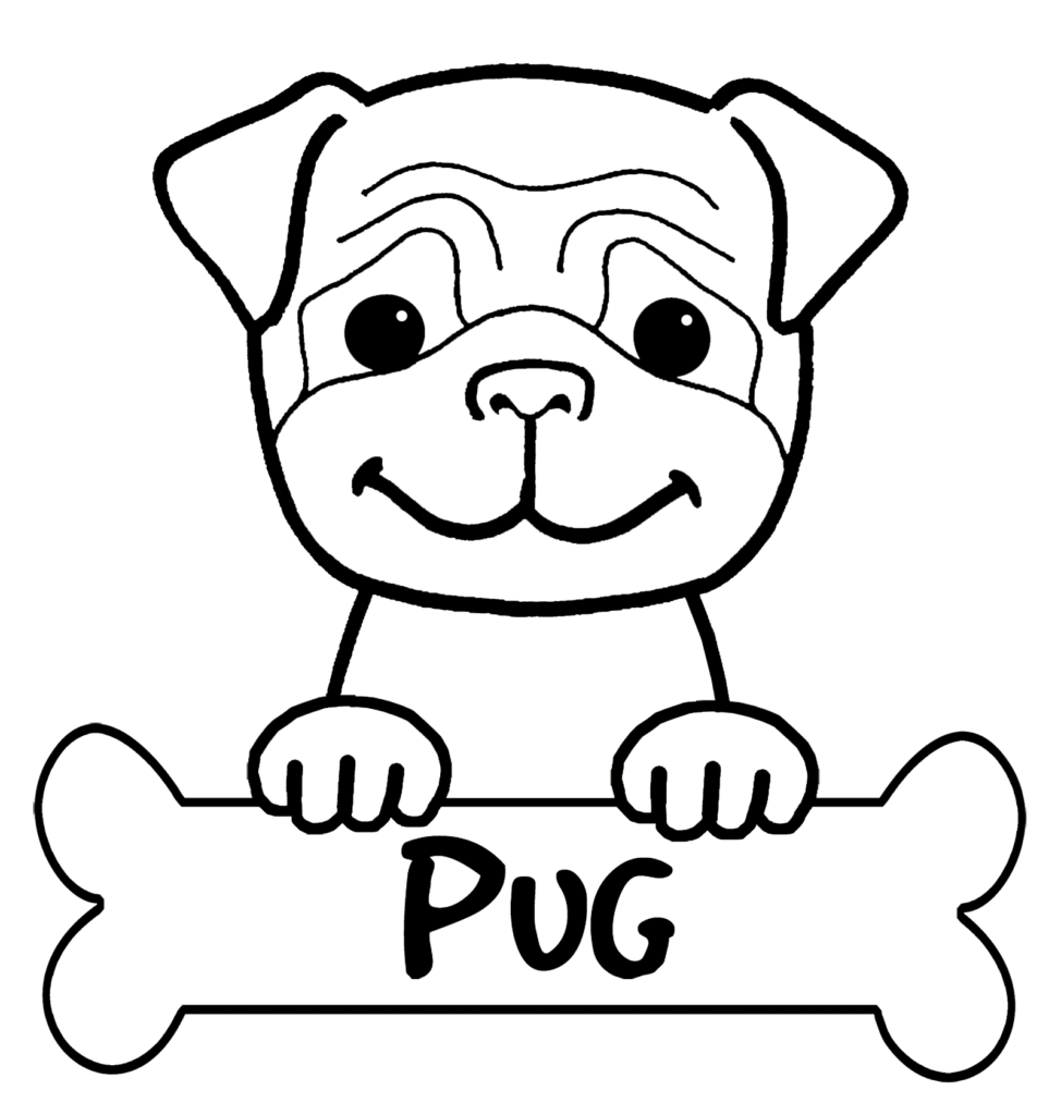 Pug Outline Drawing