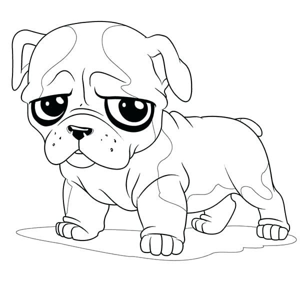 The best free Pug drawing images. Download from 630 free ...