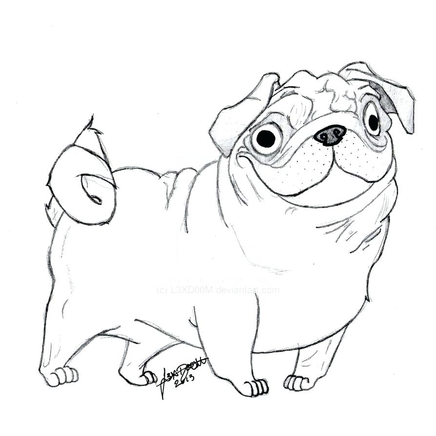 Pug Puppy Drawing at GetDrawings.com | Free for personal use Pug ...