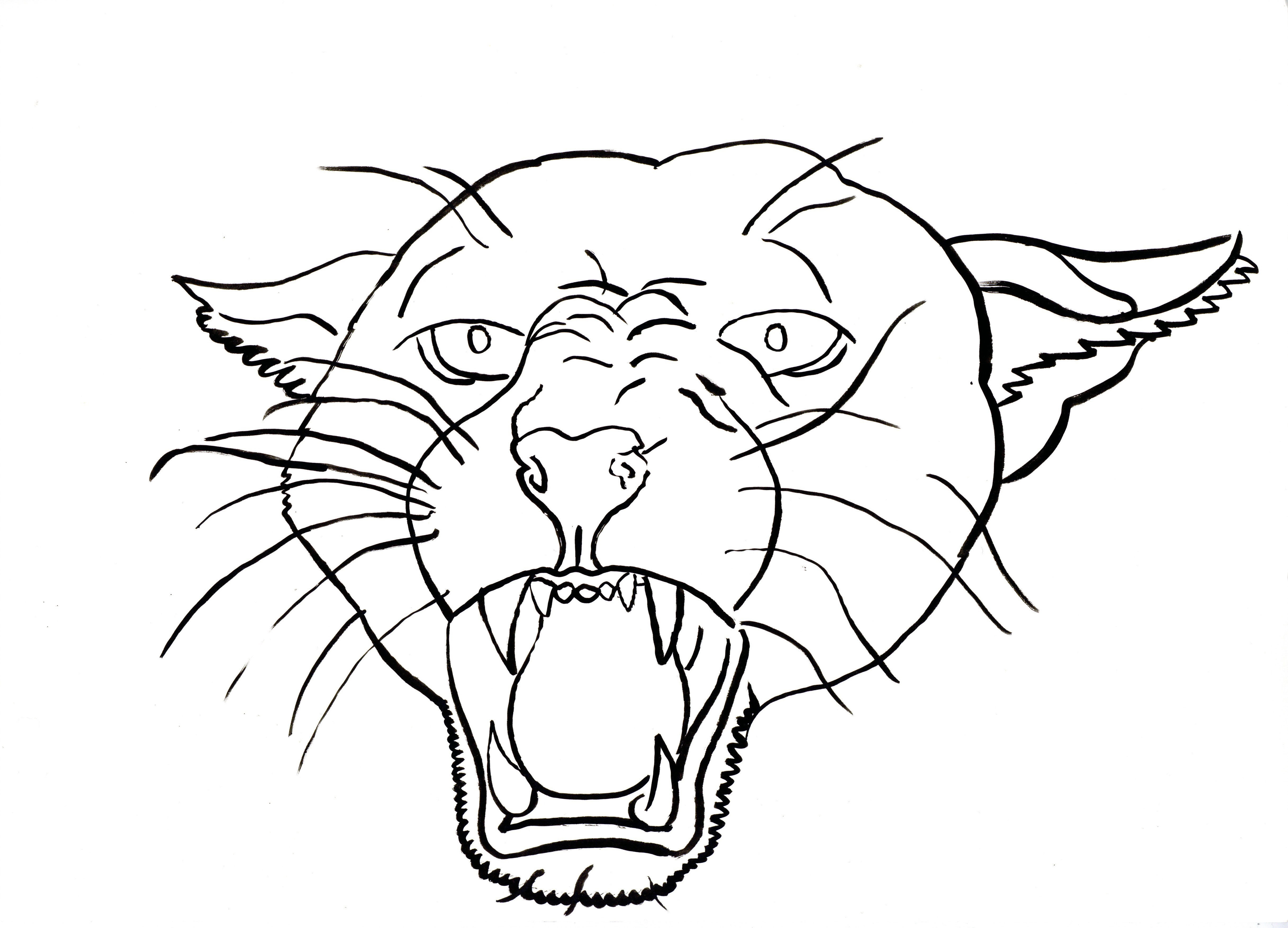 4867x3510 Live Project Puma Line Drawing Lester Duggan Illustration