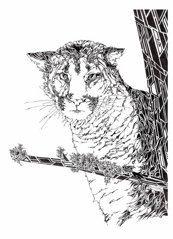 570x789 Mountain Lion Drawing, Cougar Illustration, Puma Drawing, Big Cat