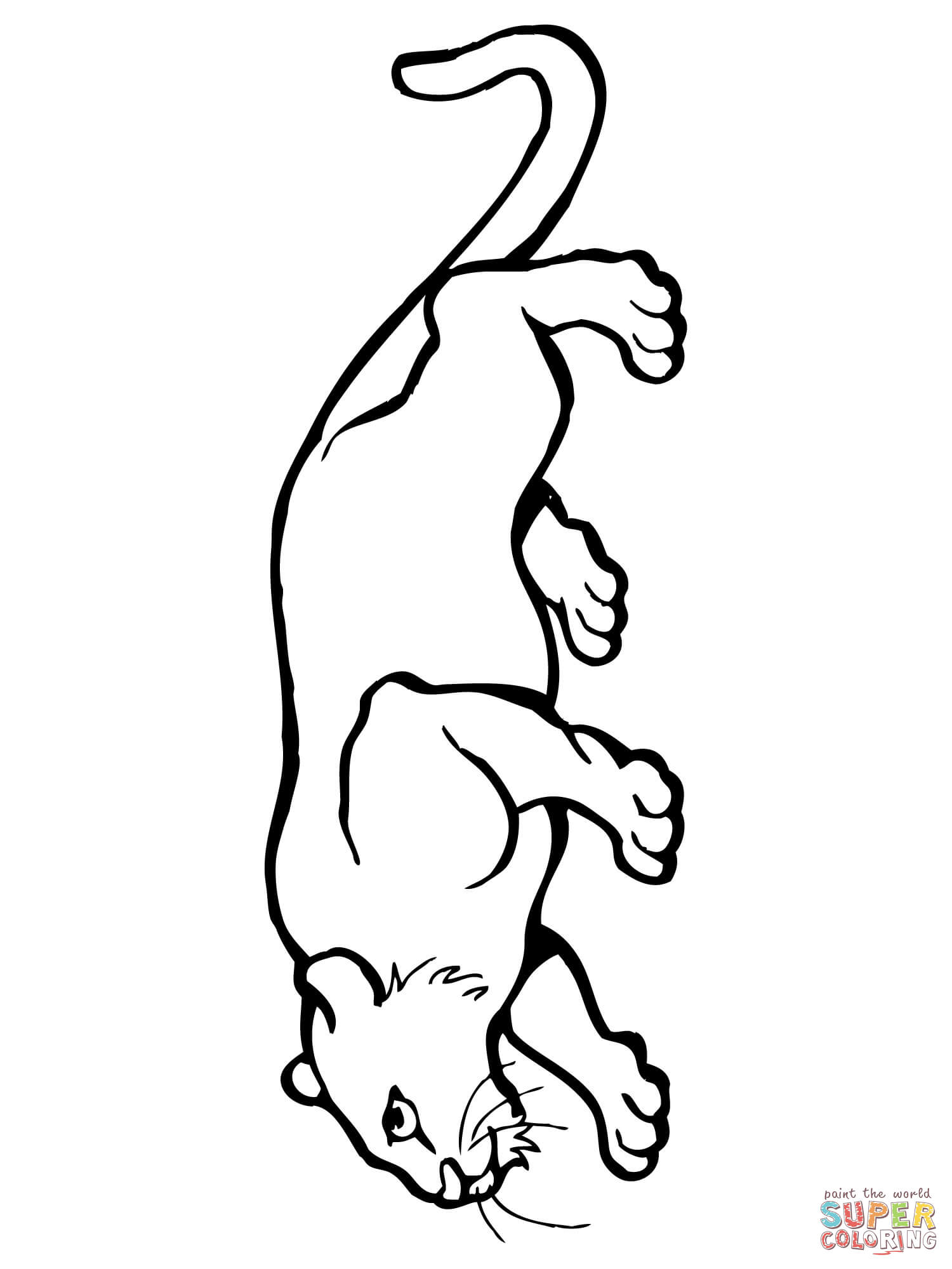 1500x2000 Cougar Or Puma Panther Mountain Lion Coloring Page Free