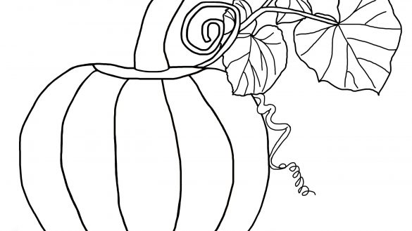585x329 Coloring Book Pumpkin 2 Objects Printable Pages Drawing Page