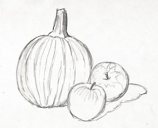 504x408 Still Life Pumpkin And Apples Sketchbook Ideas