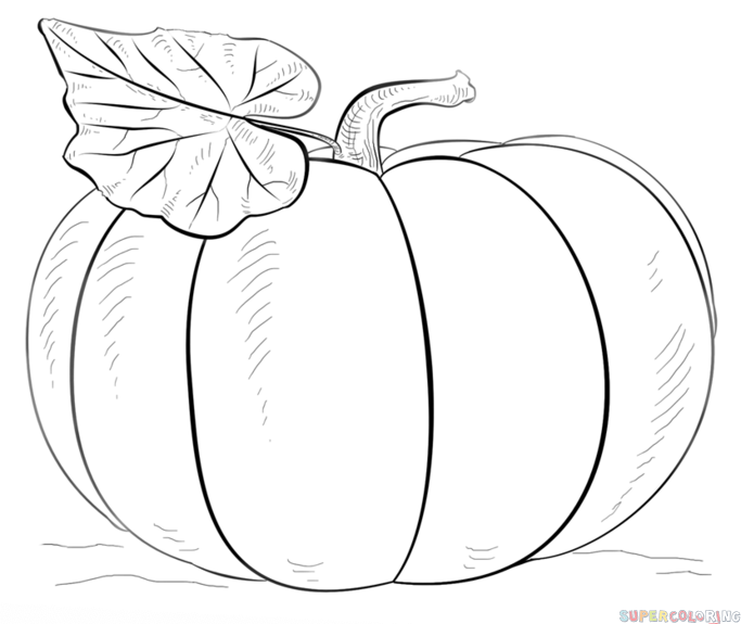 683x575 How To Draw A Pumpkin Step By Step. Drawing Tutorials For Kids
