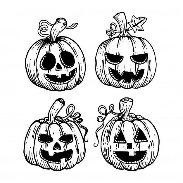 626x626 Hand Drawing Halloween Pumpkin Set Vector Premium Download