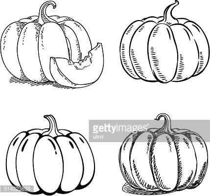 429x400 Pumpkin Sketch