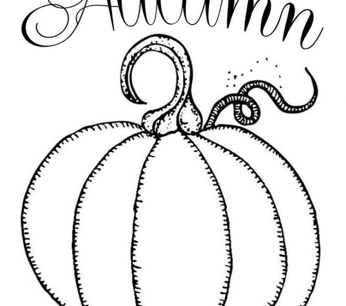 678x600 Free Printable Drawing Templates Best 25 Pumpkin Printable Ideas