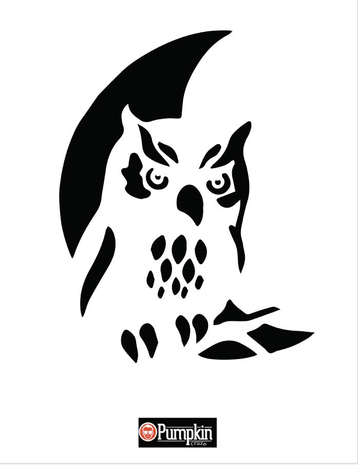 697x904 Owl Pumpkin Pattern Pumpkin Craze