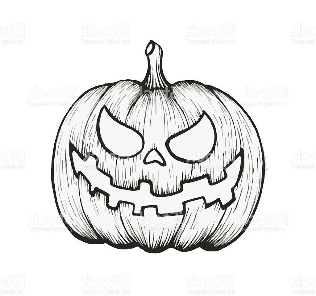1024x959 Unique Vector Of Hand Draw Halloween Pumpkin Images