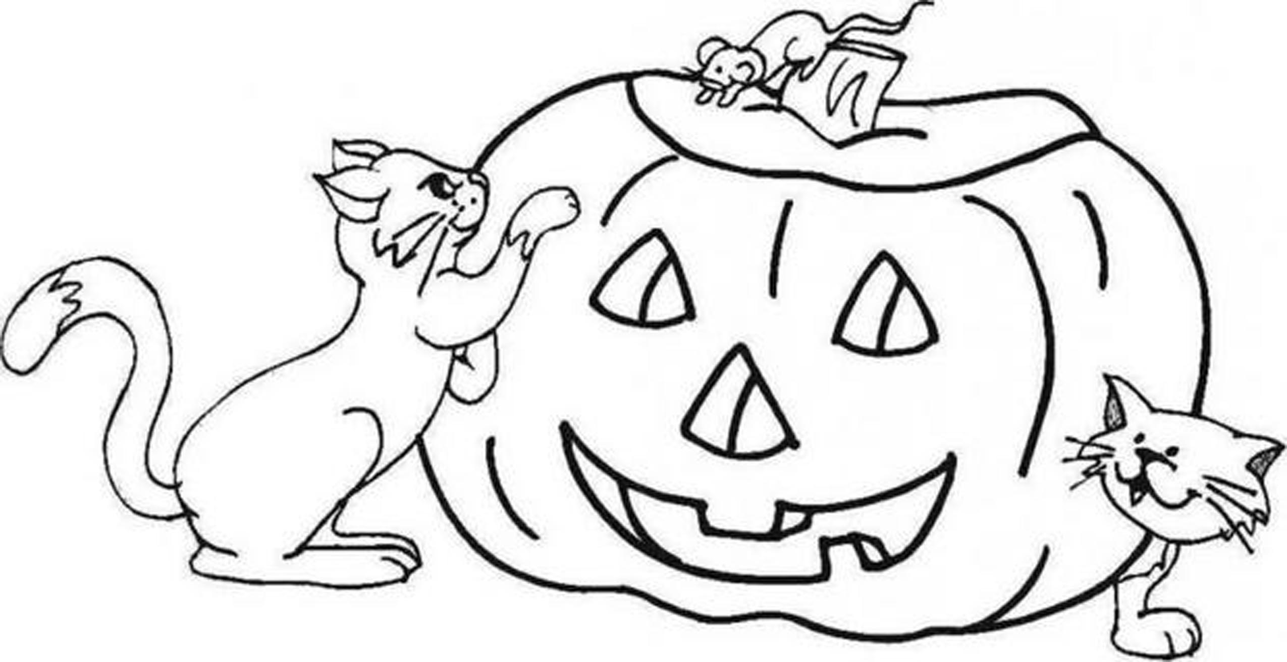 photograph relating to Printable Pumpkin Face known as Pumpkin Experience Drawing at  Totally free for particular person