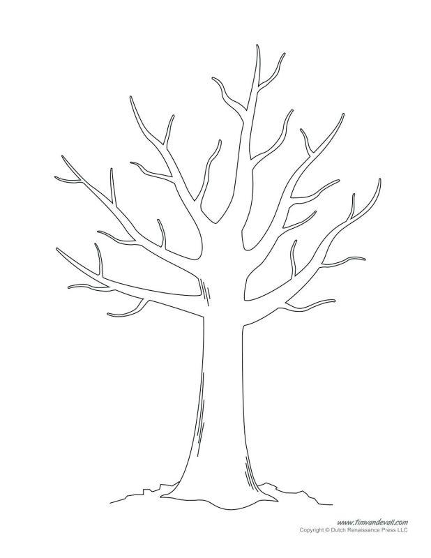 618x800 Tree Drawing 106 Fascinating Printable Leaf Template Pumpkin