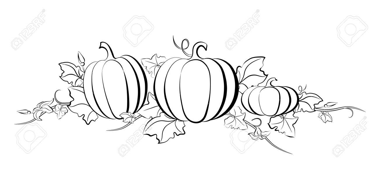 Pumpkin Leaves Drawing at GetDrawings.com | Free for ...