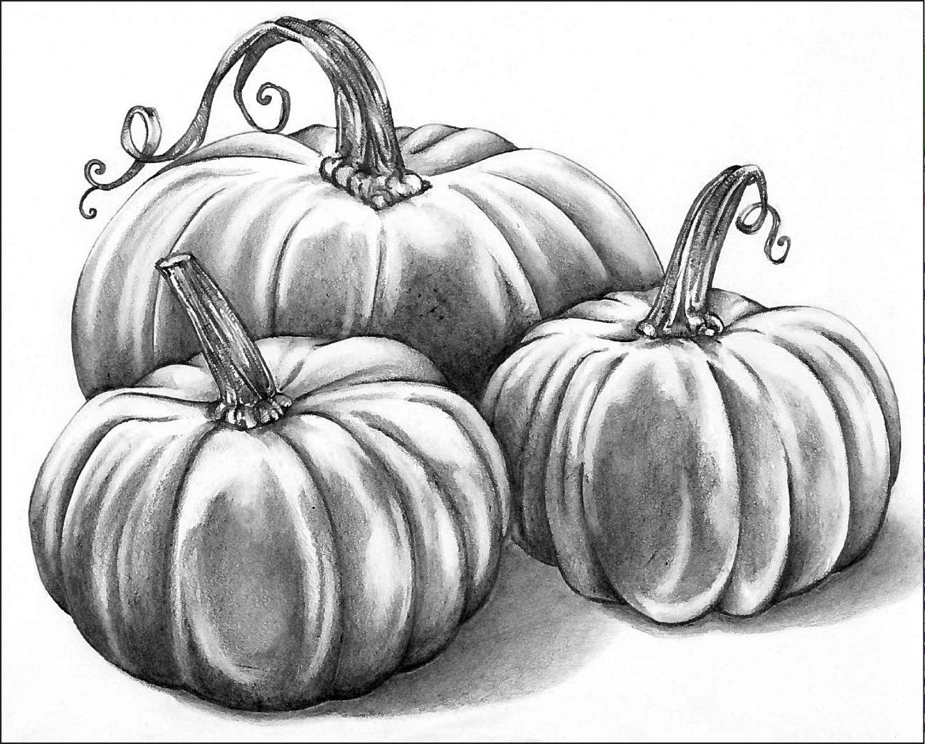 1300x1046 Graphite Pencil Pumpkin Patch Drawing Graphite