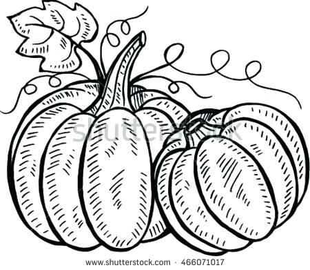 450x391 Pumpkin Drawing Pin Drawn Line Pumpkin Small Pumpkin Drawing Ideas
