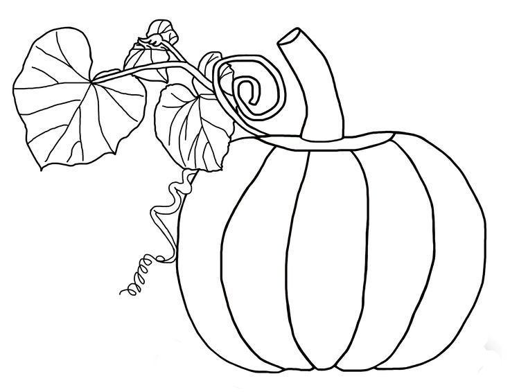 736x566 franklin s pumpkin coloring pages coloring page