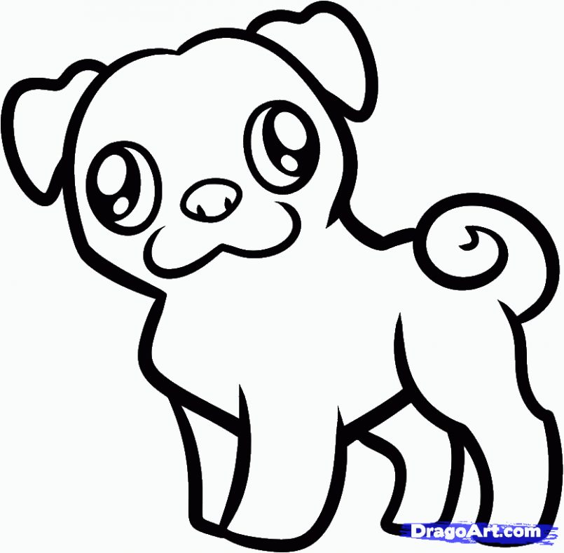805x789 Puppy Drawings