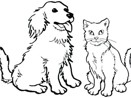 Puppy And Kitten Drawing At GetDrawings Free Download
