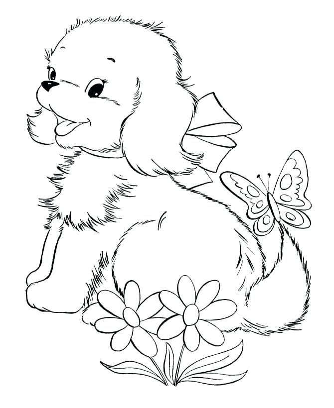Puppy And Kitten Drawing at GetDrawings.com | Free for personal use ...