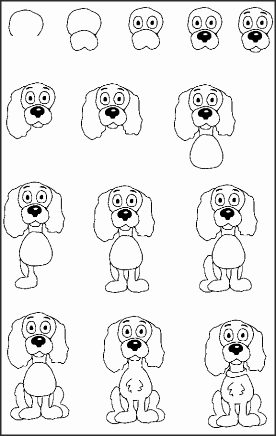 Puppy Drawing Step By Step