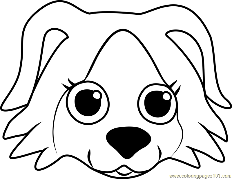 800x619 Border Collie Puppy Face Coloring Page
