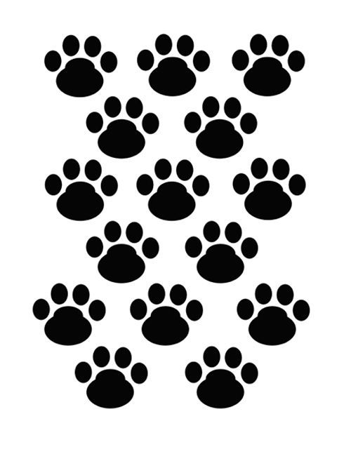 Puppy Paw Drawing